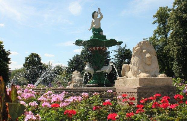 Beacon Park's Museum Gardens