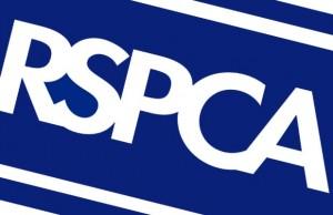 RSPCA_Logo_Big