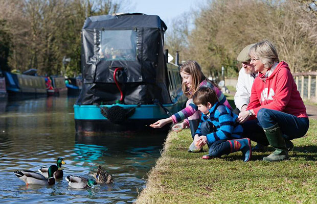 A family feeding the ducks