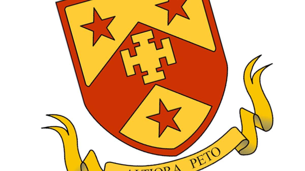 Netherstowe School logo