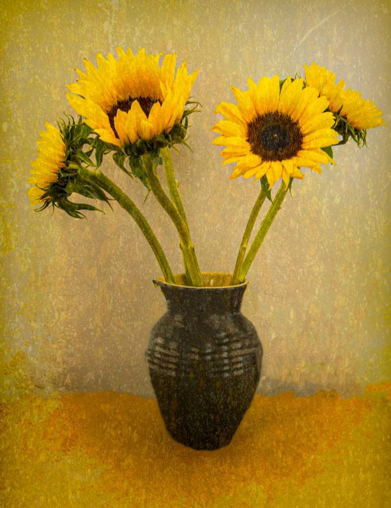 Sunflowers - Peter Evans