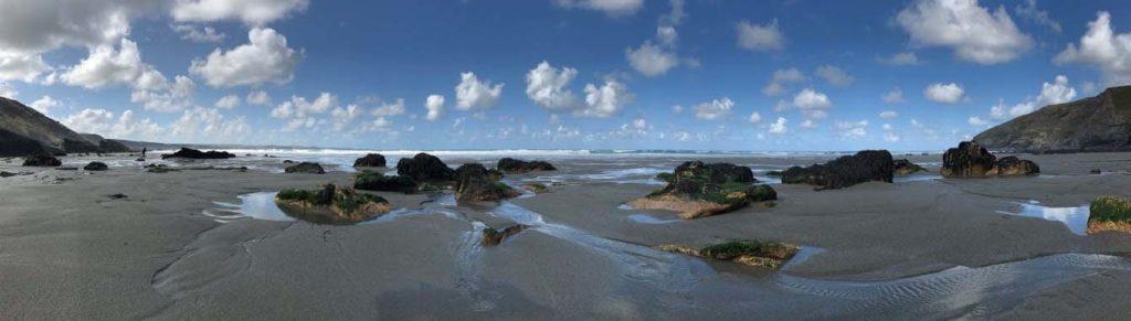 Devon Coastline - Liz Thomas