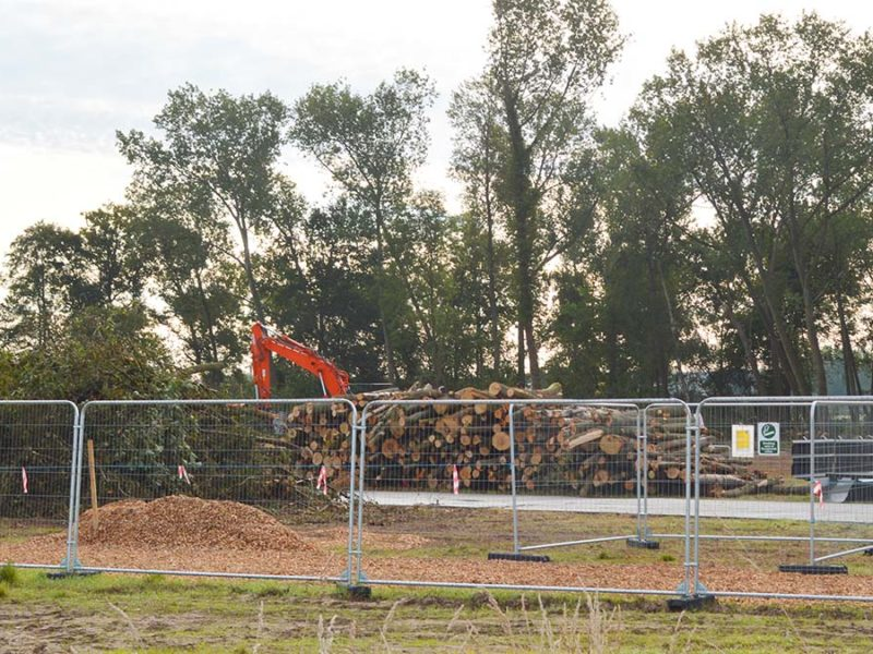 Trees being cut down to make way for HS2 in Lichfield. Picture: Extinction Rebellion