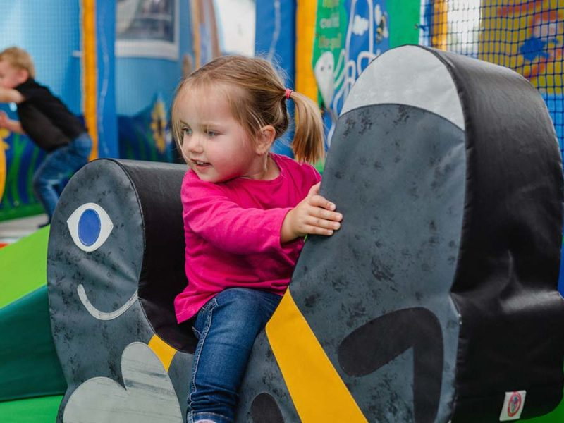 Children enjoying the soft play area at Dobbies