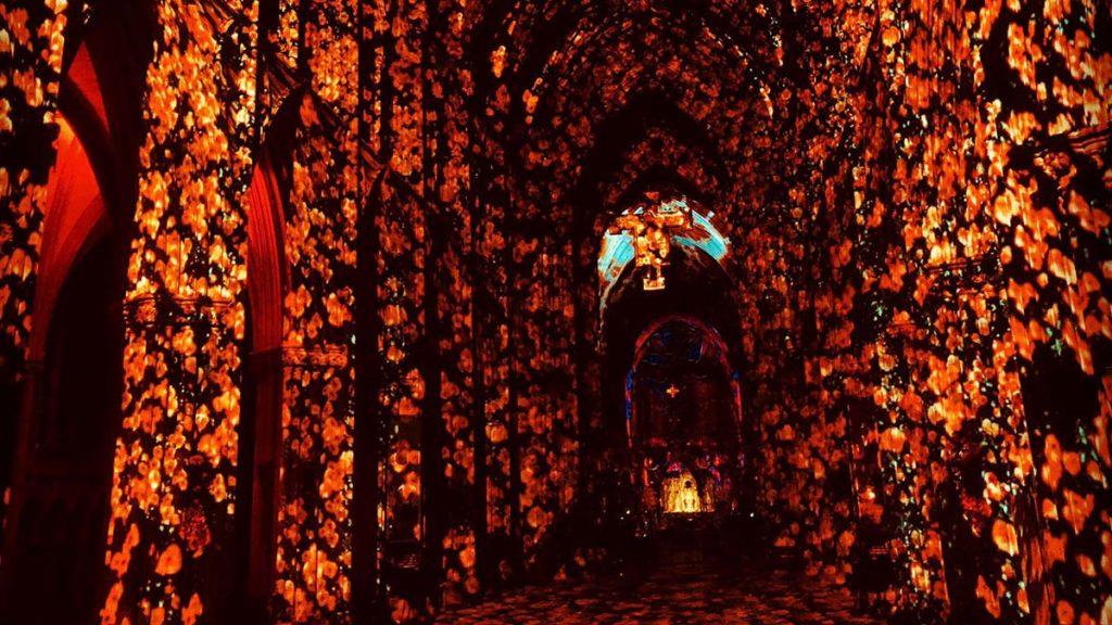 The Poppy Fields light display