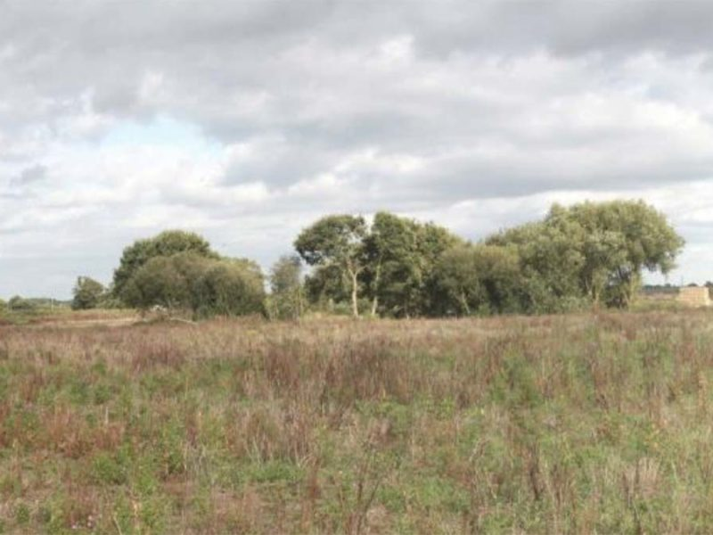 Part of the land which could be used to store HGVs