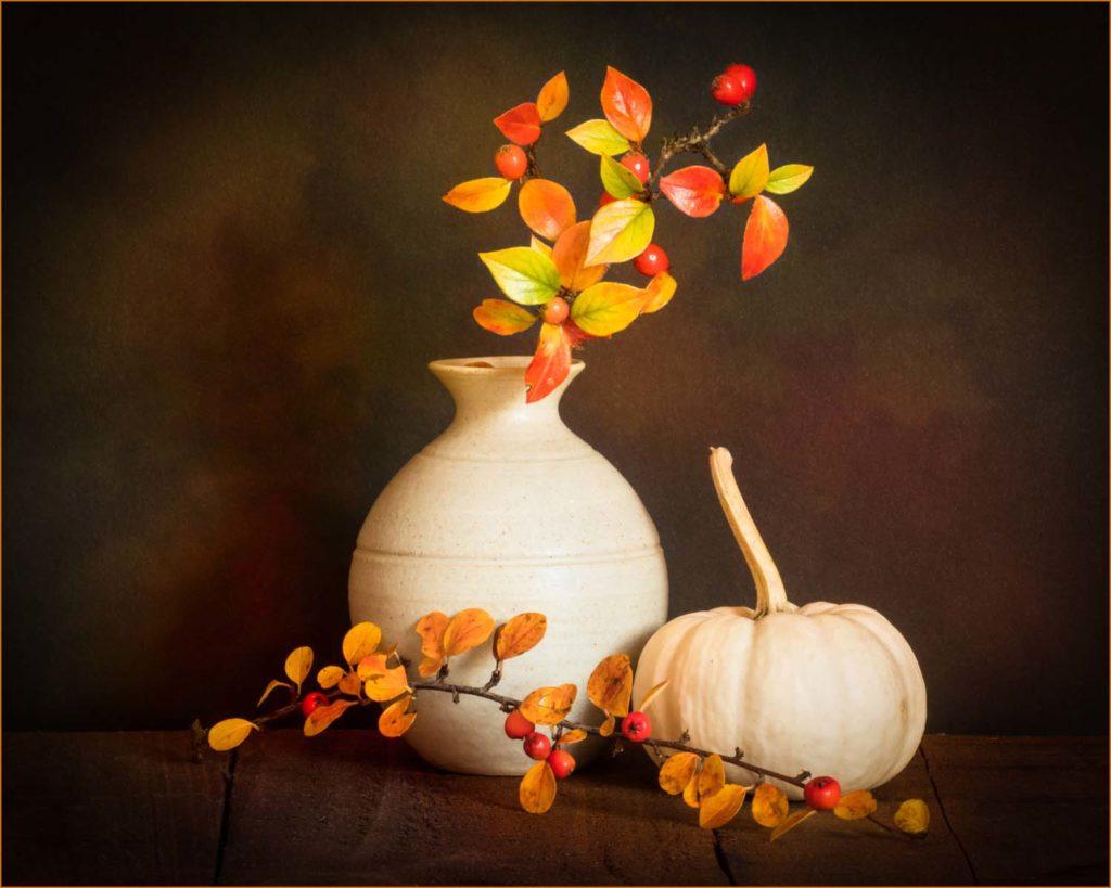 Still Life with Gourd - Sandra Morgan