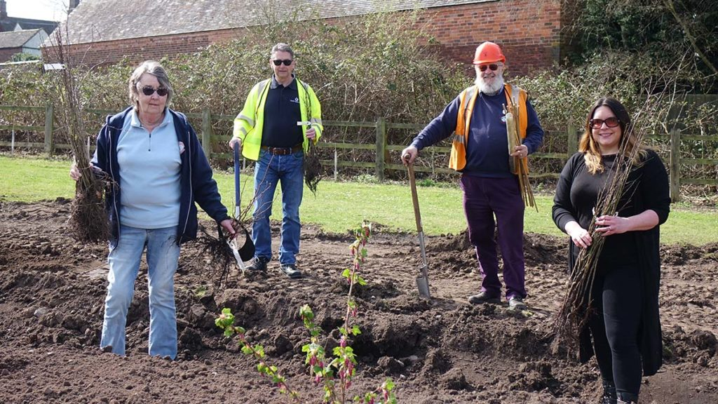 Chris Bull, Pete Aspley, Peter Buck and Caroline Cooper get ready to plant a section of hedge