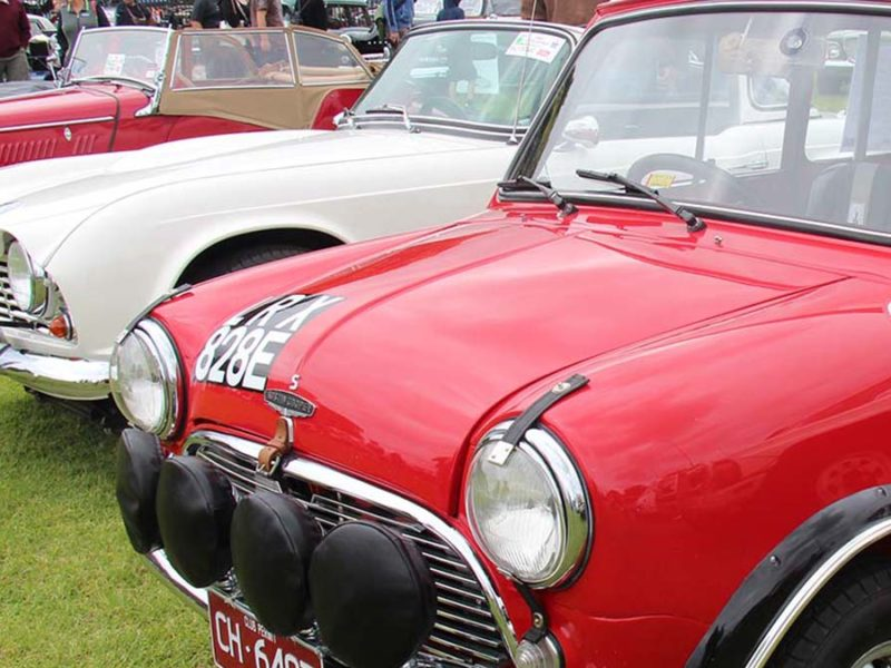 Classic cars. Picture: Sicnag