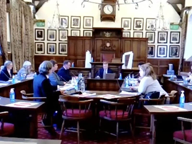 A Lichfield District Council cabinet streamed online