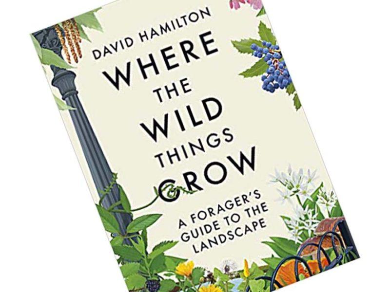 Where the Wild Things Grow